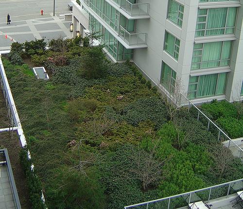 Absence de garantie biennale pour une toiture végétalisée